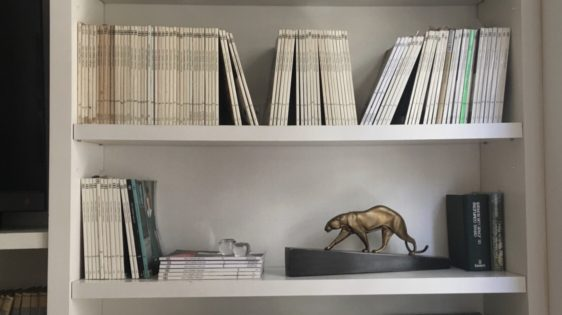 Serie Bibliotecas- María Beatriz González Zuelgaray