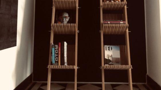 Serie Bibliotecas- Fabián Alejo Parra