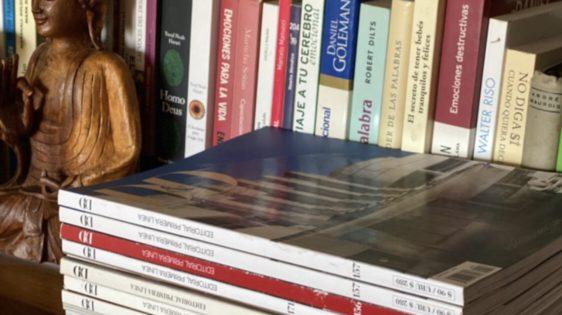 Serie Bibliotecas-Agustina Allende Posse