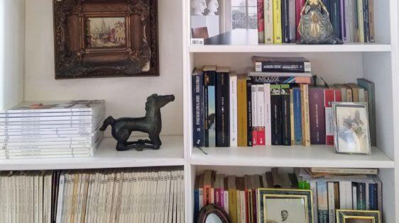 Serie Bibliotecas-Adriana Grin
